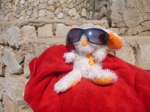 Herr Bommel, ein Reisemaskottchen, Stoffhase mit orangen Ohren und Sonnenbrille auf rotem Handtuch auf Steinen sitzend