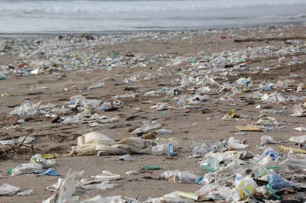 Plastikmüll an Strand, Content Marketing und Nachhaltigkeit