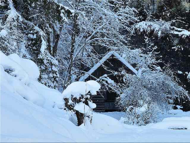 weihnachten wintergarten